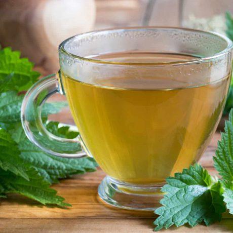 herbata sok z pokrzywy działanie przeciwwskazania